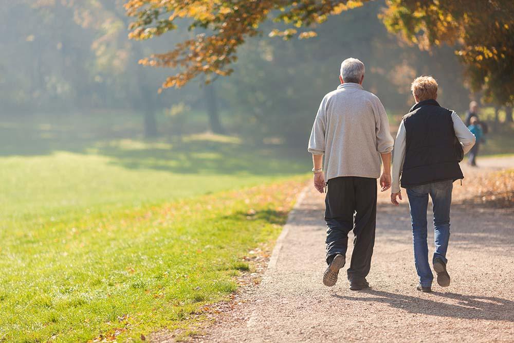 ouder paar wandelt in bos